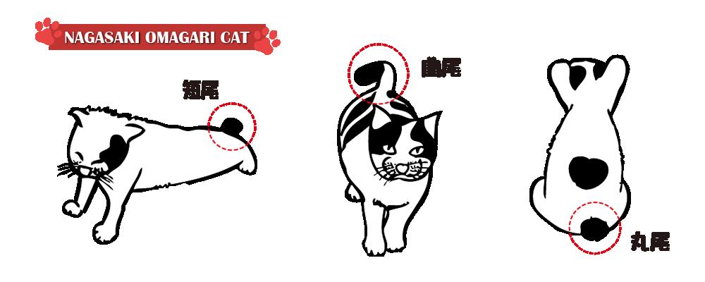長崎尾曲がりネコ尻尾の図